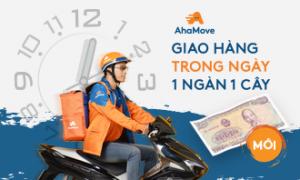 [Dịch vụ mới] GIAO HÀNG TRONG NGÀY – 1 NGÀN 1 CÂY